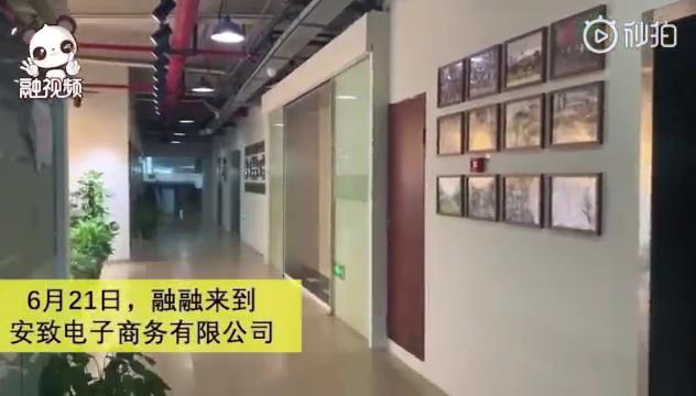 安致股份:让世界爱上中国品牌图片