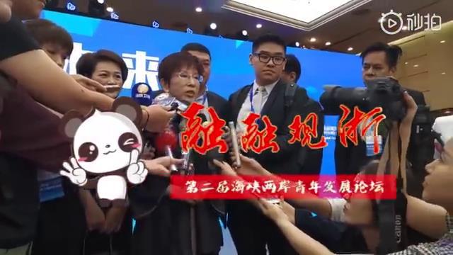 前国民党主席洪秀柱:未来属于青年,两岸青年必须来往图片